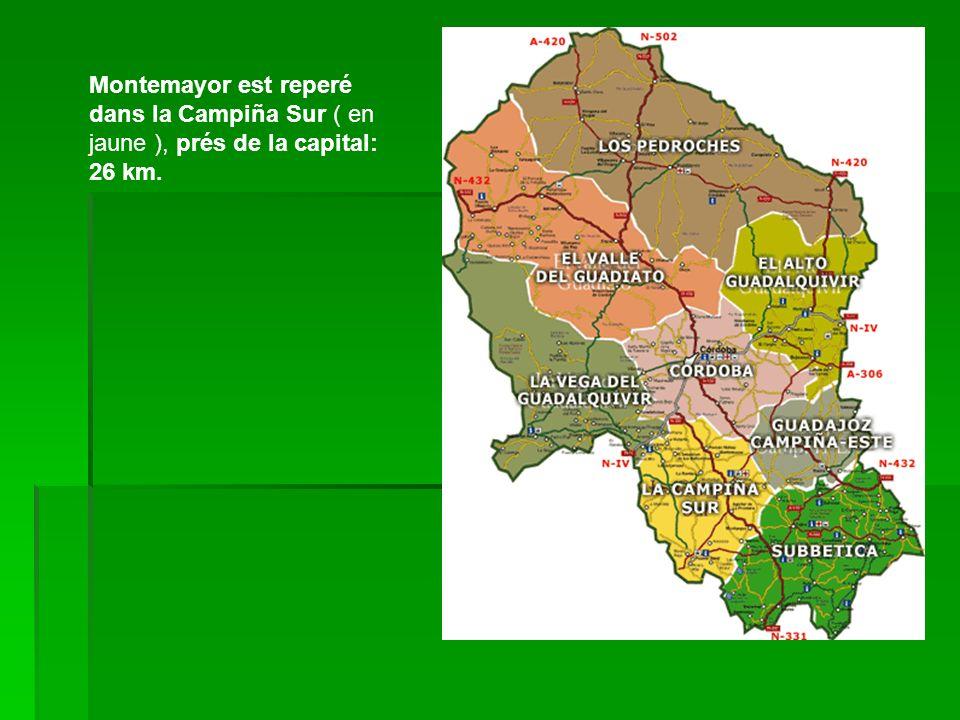 Montemayor est reperé dans la Campiña Sur ( en jaune ), prés de la capital: 26 km.