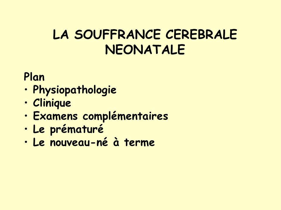 LA SOUFFRANCE CEREBRALE NEONATALE Plan Physiopathologie Clinique Examens complémentaires Le prématuré Le nouveau-né à terme