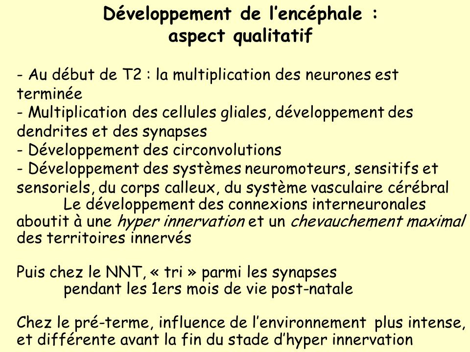 Développement de lencéphale : aspect qualitatif - Au début de T2 : la multiplication des neurones est terminée - Multiplication des cellules gliales, développement des dendrites et des synapses - Développement des circonvolutions - Développement des systèmes neuromoteurs, sensitifs et sensoriels, du corps calleux, du système vasculaire cérébral Le développement des connexions interneuronales aboutit à une hyper innervation et un chevauchement maximal des territoires innervés Puis chez le NNT, « tri » parmi les synapses pendant les 1ers mois de vie post-natale Chez le pré-terme, influence de lenvironnement plus intense, et différente avant la fin du stade dhyper innervation