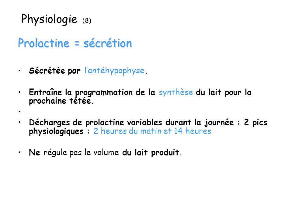 Physiologie (8) Prolactine = sécrétion Sécrétée par lantéhypophyse. Entraîne la programmation de la synthèse du lait pour la prochaine tétée. Décharge