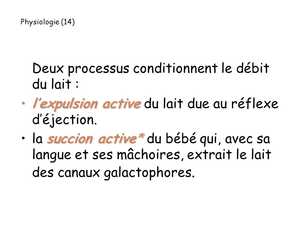 Deux processus conditionnent le débit du lait : lexpulsion activelexpulsion active du lait due au réflexe déjection. succion active*la succion active*