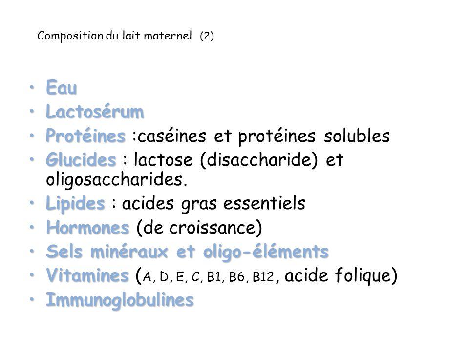 Composition du lait maternel (2) EauEau LactosérumLactosérum ProtéinesProtéines :caséines et protéines solubles GlucidesGlucides : lactose (disaccharide) et oligosaccharides.