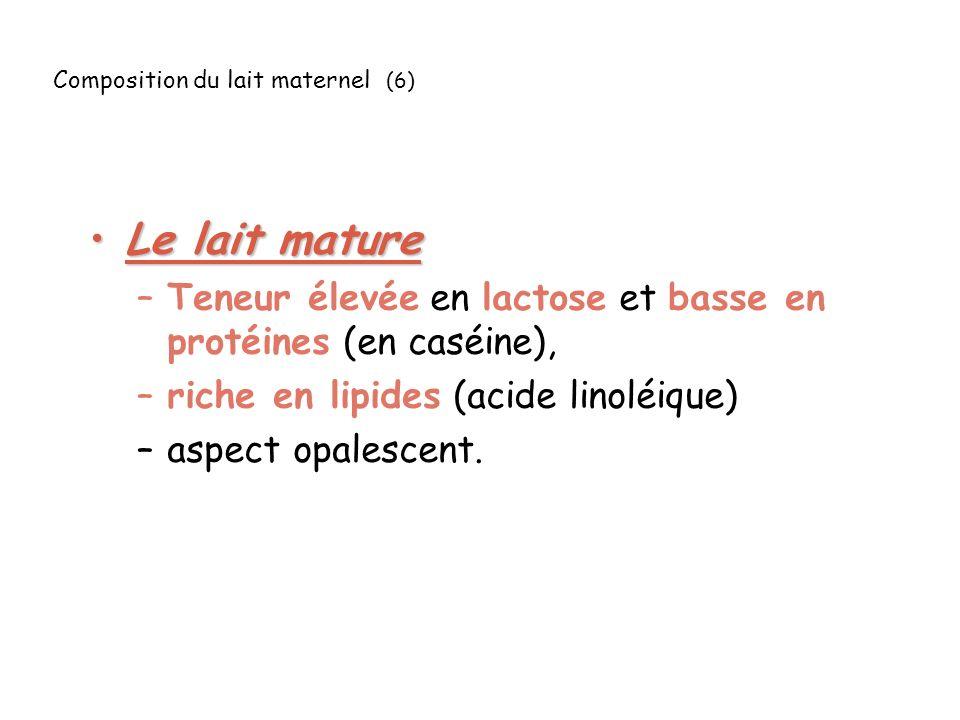 Composition du lait maternel (6) Le lait matureLe lait mature –Teneur élevée en lactose et basse en protéines (en caséine), –riche en lipides (acide linoléique) –aspect opalescent.