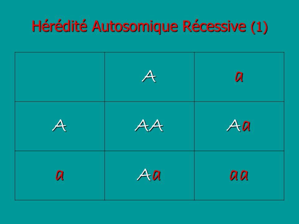 Hérédité Autosomique Récessive (1) Aa AAA AaAaAaAa a AaAaAaAaaa