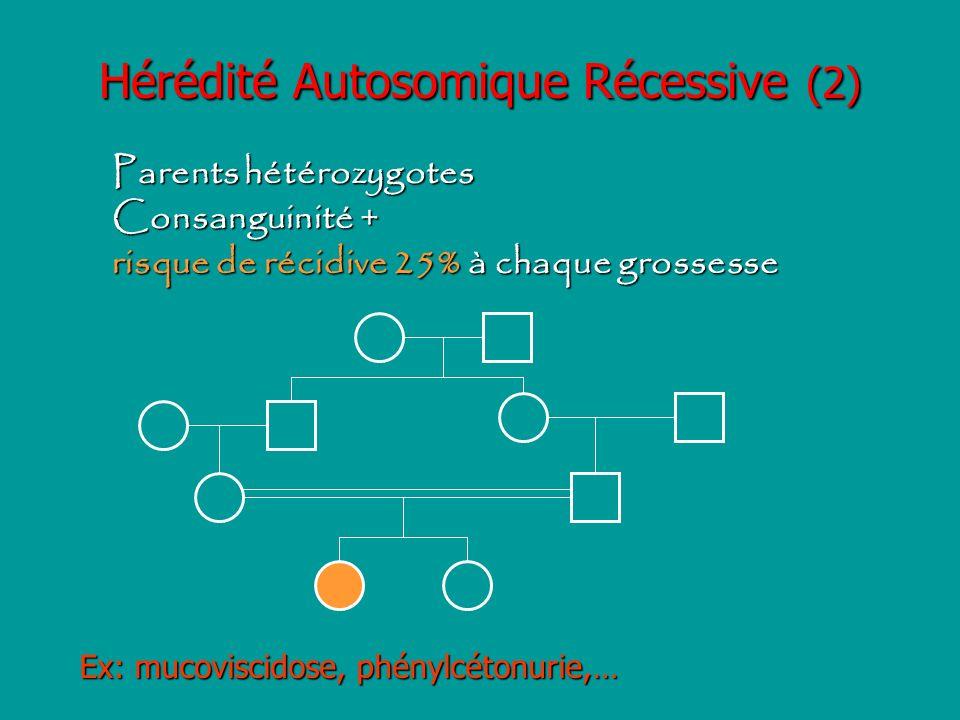 Hérédité Autosomique Récessive (2) Parents hétérozygotes Consanguinité + risque de récidive 25% à chaque grossesse Ex: mucoviscidose, phénylcétonurie,