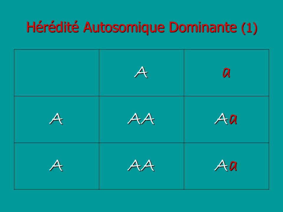 Hérédité Autosomique Dominante (1) Aa AAA AaAaAaAa AAA AaAaAaAa