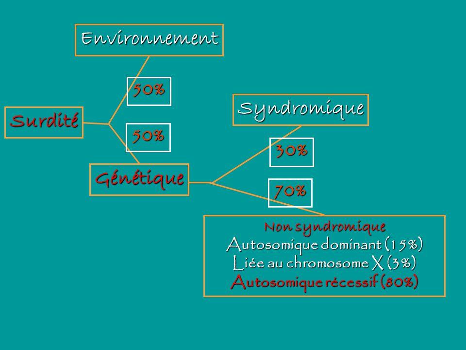 Surdité Environnement 50% Génétique 50% Non syndromique Autosomique dominant (15%) Liée au chromosome X (3%) Autosomique récessif (80%) 70% Syndromiqu