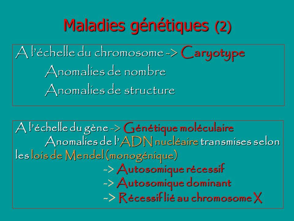 Maladies génétiques (3) Hérédité multifactorielle: maladies sous la dépendance de facteurs génétiques et environnementaux: Diabète, HTA...