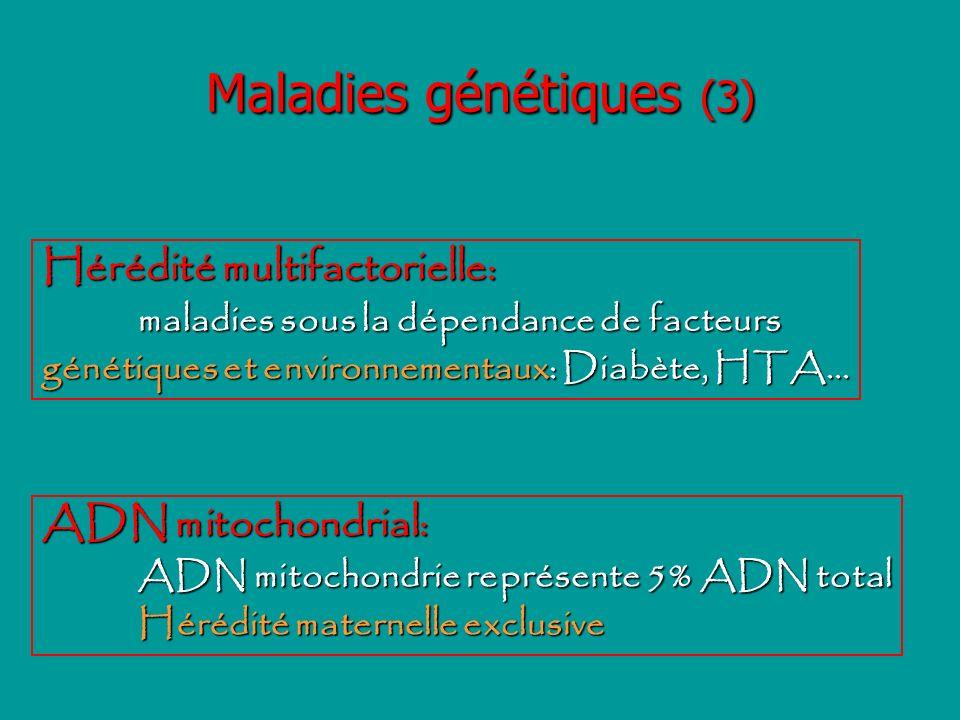 Maladies génétiques (3) Hérédité multifactorielle: maladies sous la dépendance de facteurs génétiques et environnementaux: Diabète, HTA... ADN mitocho