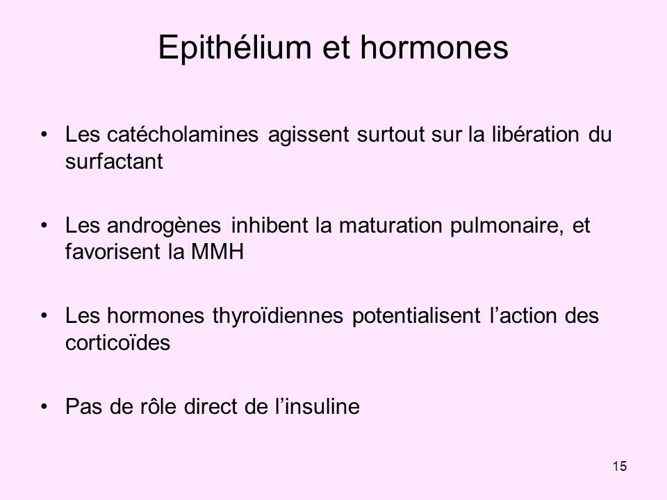 15 Epithélium et hormones Les catécholamines agissent surtout sur la libération du surfactant Les androgènes inhibent la maturation pulmonaire, et fav