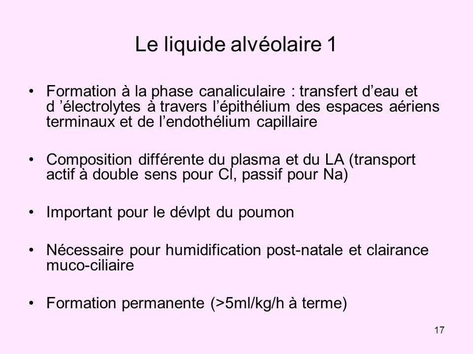 17 Le liquide alvéolaire 1 Formation à la phase canaliculaire : transfert deau et d électrolytes à travers lépithélium des espaces aériens terminaux e