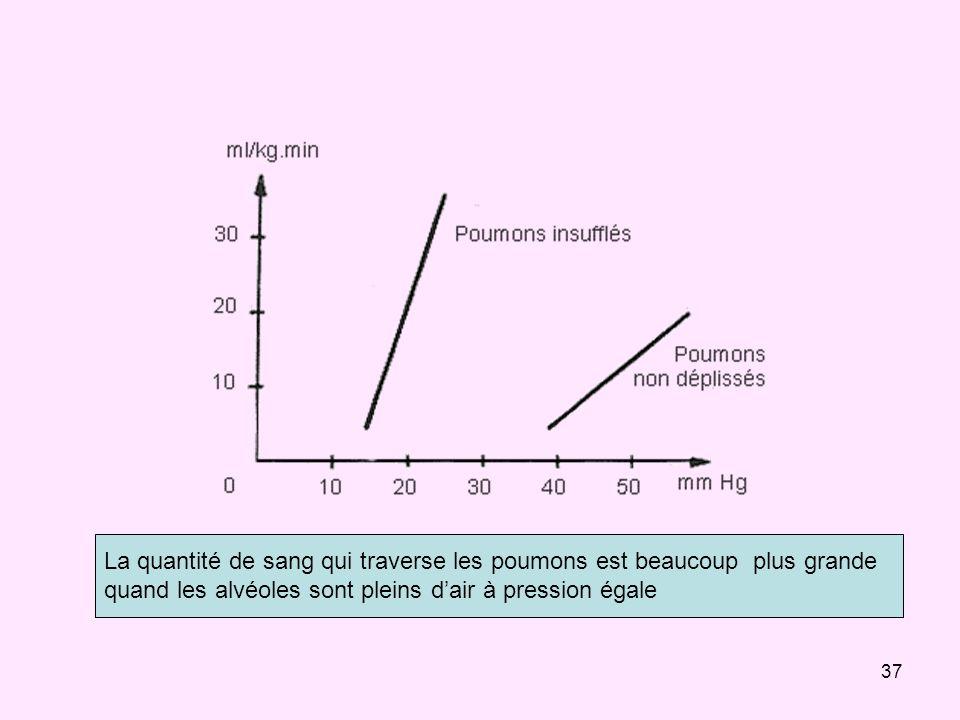 37 La quantité de sang qui traverse les poumons est beaucoup plus grande quand les alvéoles sont pleins dair à pression égale