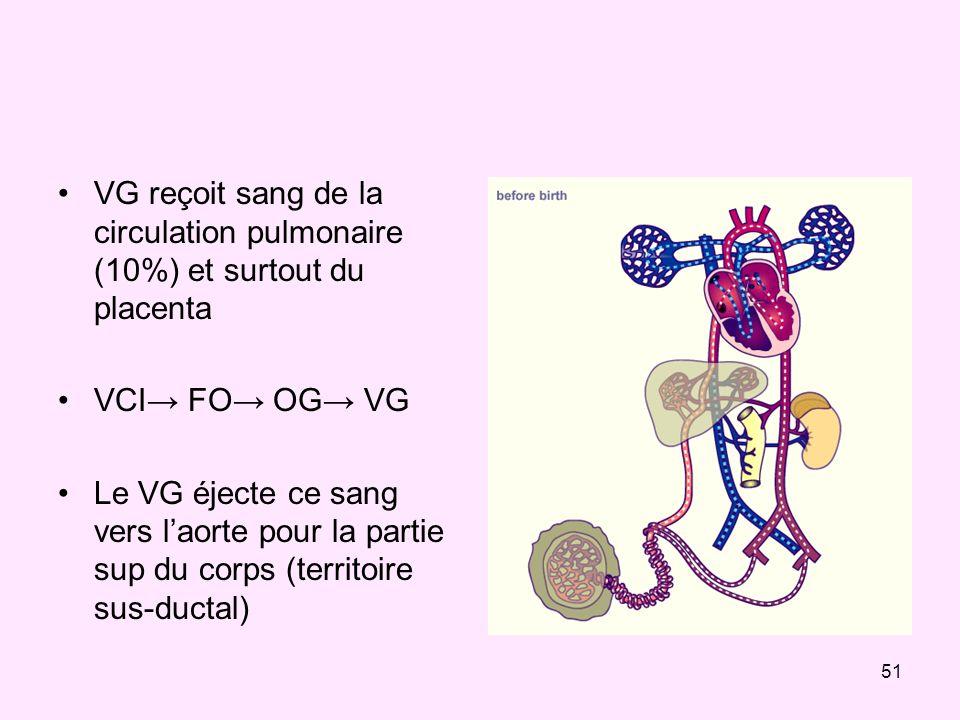 51 VG reçoit sang de la circulation pulmonaire (10%) et surtout du placenta VCI FO OG VG Le VG éjecte ce sang vers laorte pour la partie sup du corps