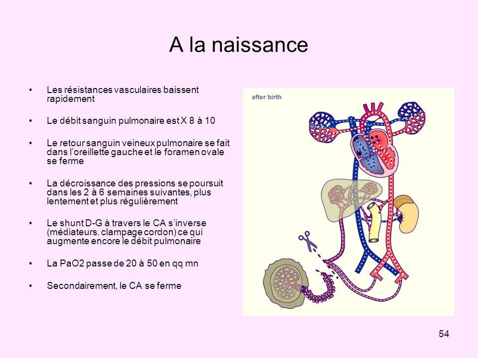 54 A la naissance Les résistances vasculaires baissent rapidement Le débit sanguin pulmonaire est X 8 à 10 Le retour sanguin veineux pulmonaire se fai