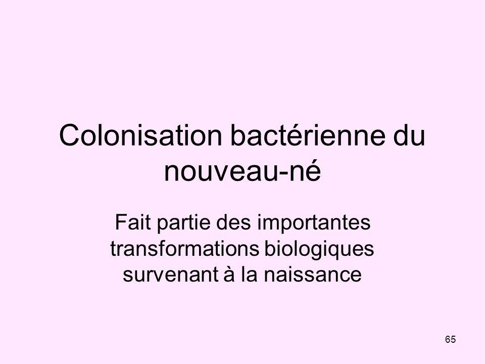 65 Colonisation bactérienne du nouveau-né Fait partie des importantes transformations biologiques survenant à la naissance