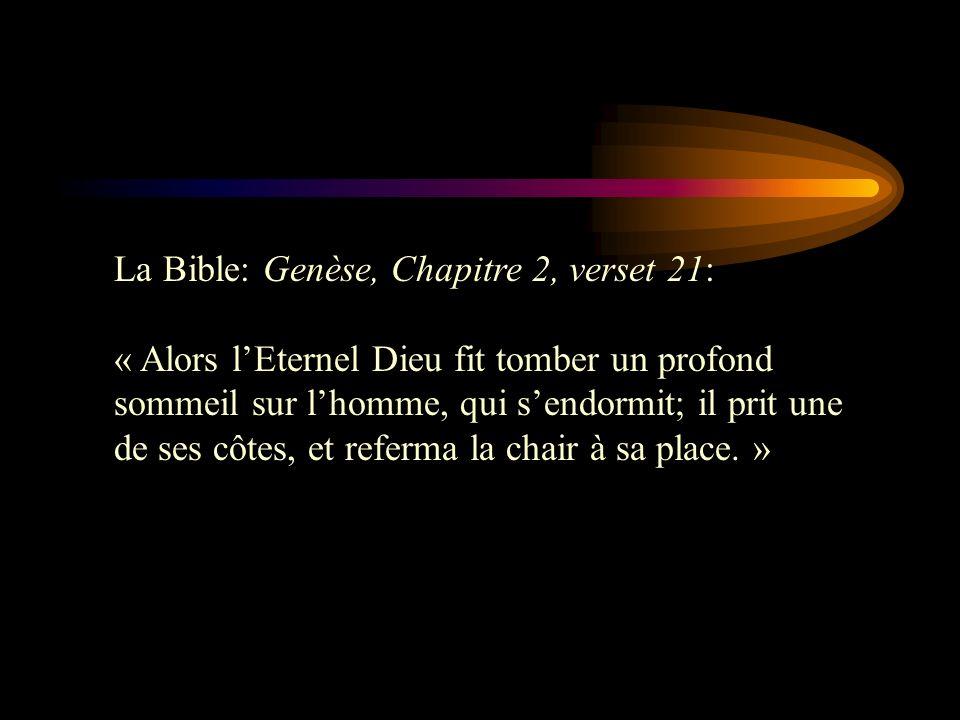 La Bible: Genèse, Chapitre 2, verset 21: « Alors lEternel Dieu fit tomber un profond sommeil sur lhomme, qui sendormit; il prit une de ses côtes, et r