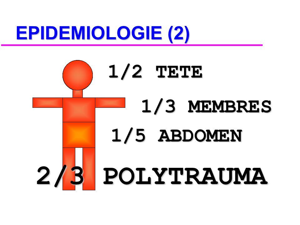 EPIDEMIOLOGIE (1) LES ACCIDENTS DE LA CIRCULATION : CIRCULATION : MOINS SOUVENT LE SYNDROME DU TARZAN DU DIMANCHE !!! LE PLUS SOUVENT