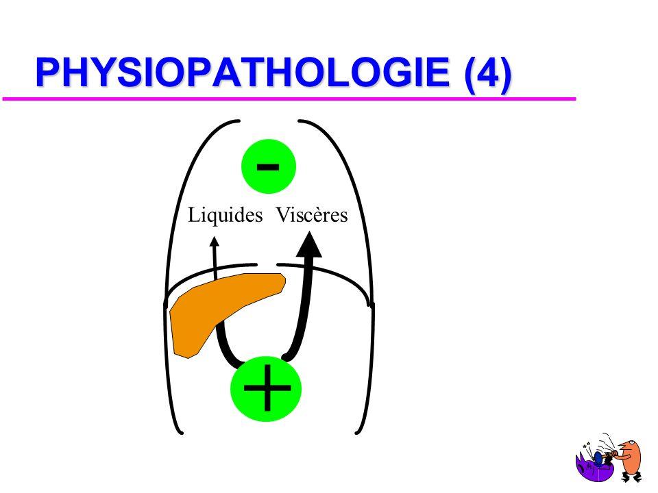 PHYSIOPATHOLOGIE (3) CHOC DéchirureTRANSVERSALE