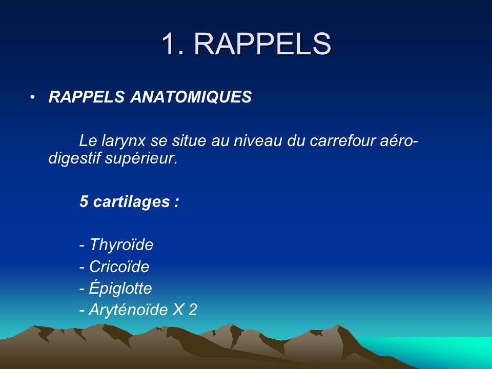 1. RAPPELS RAPPELS ANATOMIQUES Le larynx se situe au niveau du carrefour aéro- digestif supérieur. 5 cartilages : - Thyroïde - Cricoïde - Épiglotte -