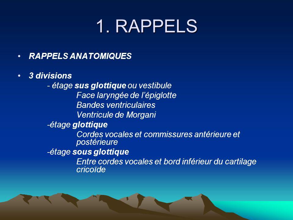 1. RAPPELS RAPPELS ANATOMIQUES 3 divisions - étage sus glottique ou vestibule Face laryngée de lépiglotte Bandes ventriculaires Ventricule de Morgani