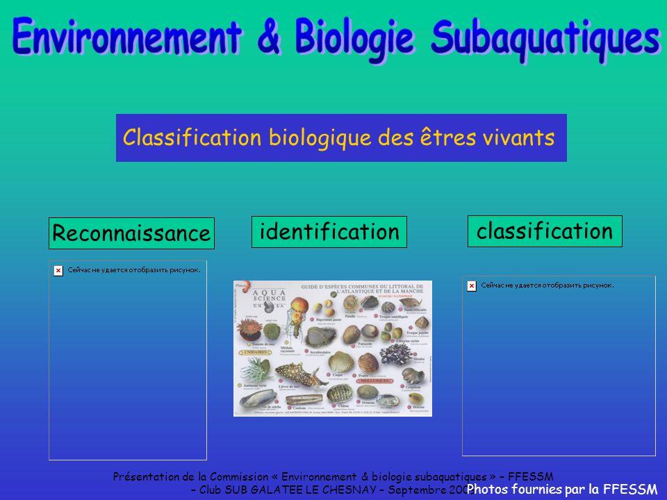 Présentation de la Commission « Environnement & biologie subaquatiques » – FFESSM – Club SUB GALATEE LE CHESNAY – Septembre 2009 Classification biolog