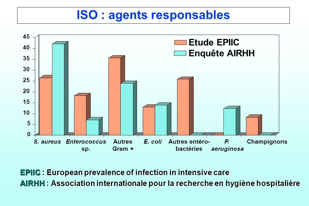 ISO : agents responsables EPIIC : European prevalence of infection in intensive care AIRHH : Association internationale pour la recherche en hygiène hospitalière 0 5 10 15 20 25 30 35 40 45 Etude EPIIC Enquête AIRHH S.