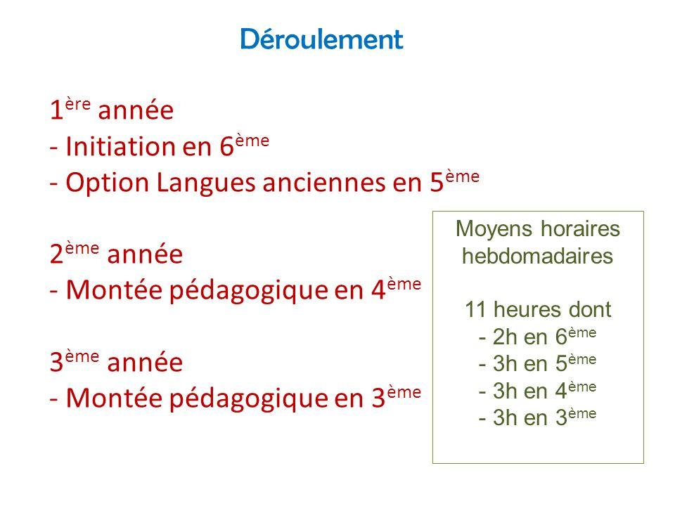 Déroulement 1 ère année - Initiation en 6 ème - Option Langues anciennes en 5 ème 2 ème année - Montée pédagogique en 4 ème 3 ème année - Montée pédag