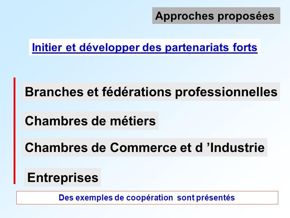 Branches et fédérations professionnelles Initier et développer des partenariats forts Approches proposées Chambres de Commerce et d Industrie Chambres de métiers Entreprises Des exemples de coopération sont présentés
