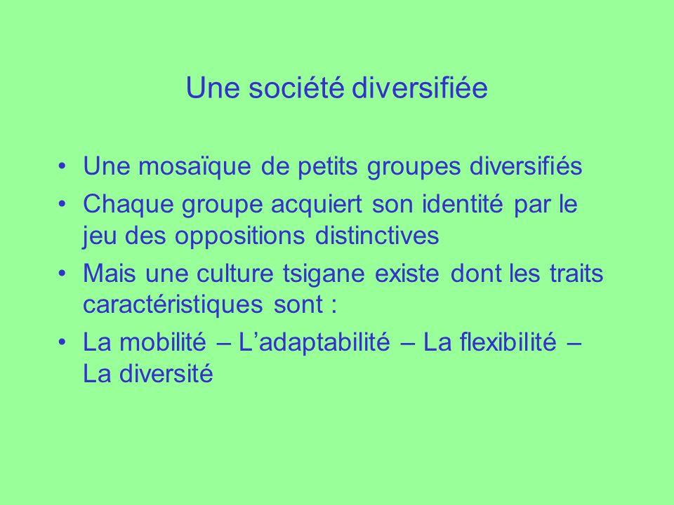 Une société diversifiée Une mosaïque de petits groupes diversifiés Chaque groupe acquiert son identité par le jeu des oppositions distinctives Mais un