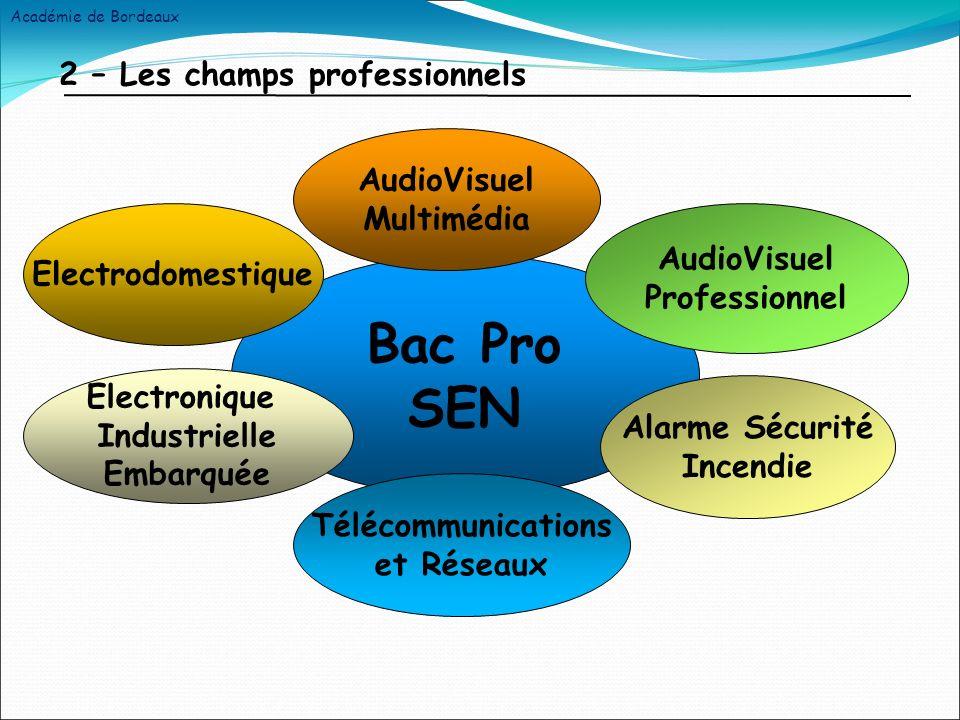 2 – Les champs professionnels Bac Pro SEN AudioVisuel Multimédia Alarme Sécurité Incendie Electrodomestique Télécommunications et Réseaux Electronique Industrielle Embarquée AudioVisuel Professionnel Académie de Bordeaux