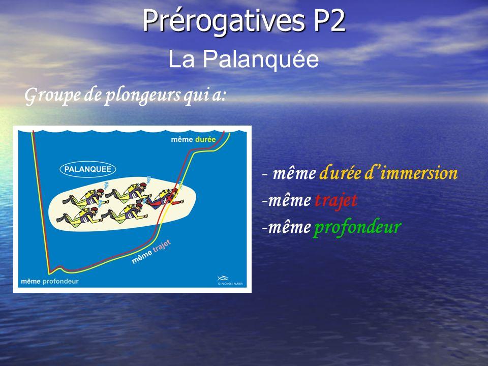 Groupe de plongeurs qui a: -même trajet Prérogatives P2 La Palanquée - même durée dimmersion -même profondeur