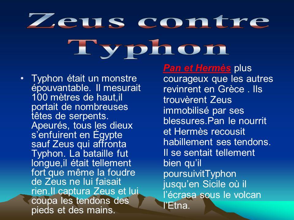 Typhon était un monstre épouvantable. Il mesurait 100 mètres de haut,il portait de nombreuses têtes de serpents. Apeurés, tous les dieux senfuirent en