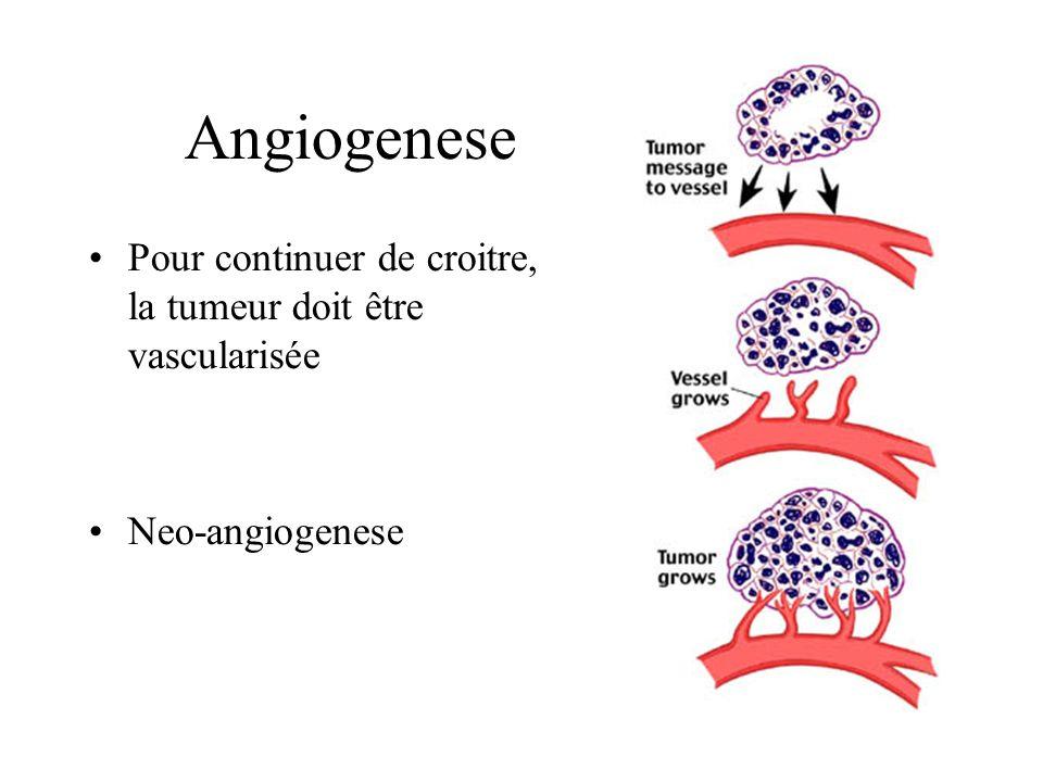 Angiogenese Pour continuer de croitre, la tumeur doit être vascularisée Neo-angiogenese