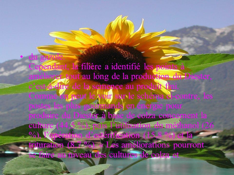 à 42 000 mégajoules. Source : ADEME-DIREM-PWC, 2002. Illustration : G. Castagnon (Proléa) Létude de lADEME et de la DIREM(1) montre un rendement énerg