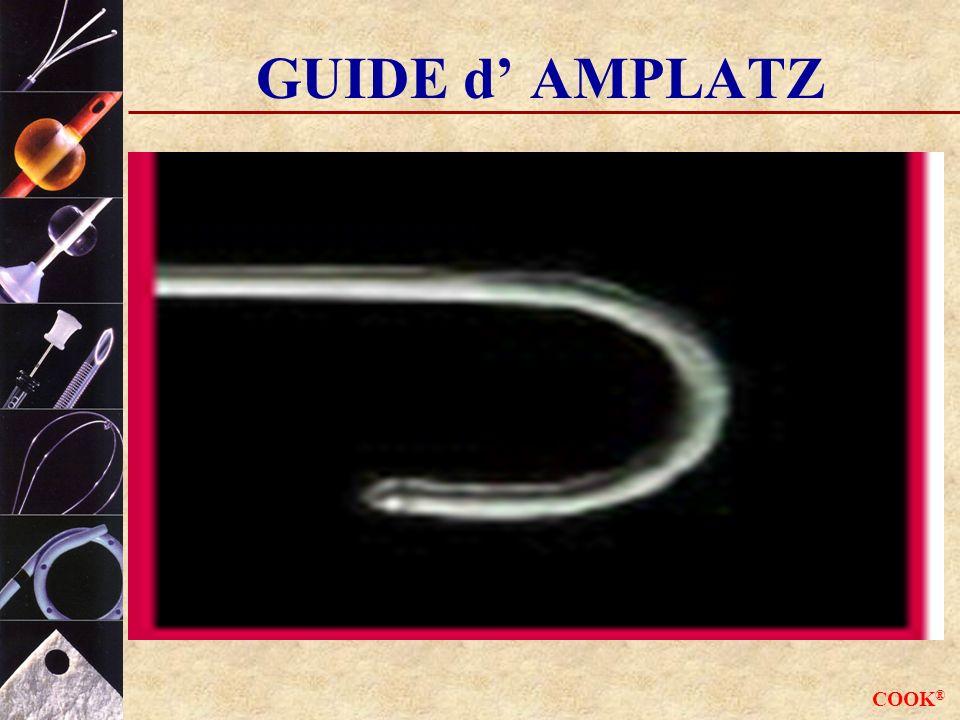 COOK ® GUIDE d AMPLATZ