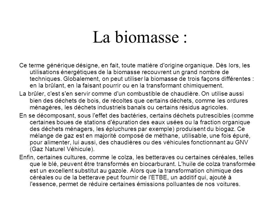 La biomasse : Ce terme générique désigne, en fait, toute matière d origine organique.