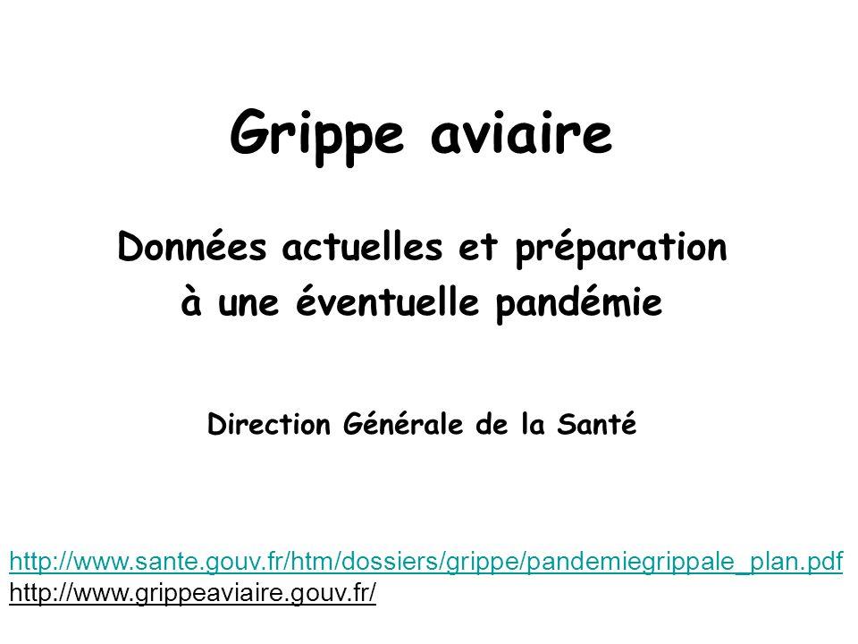 Grippe aviaire Données actuelles et préparation à une éventuelle pandémie Direction Générale de la Santé http://www.sante.gouv.fr/htm/dossiers/grippe/