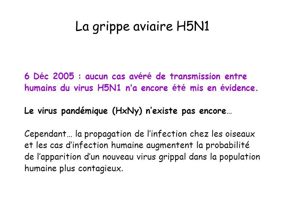 Mode de transmission du H5N1 Contacts prolongés et répétés avec : –Déjections –Plumes –Viande crue –Eau souillée...