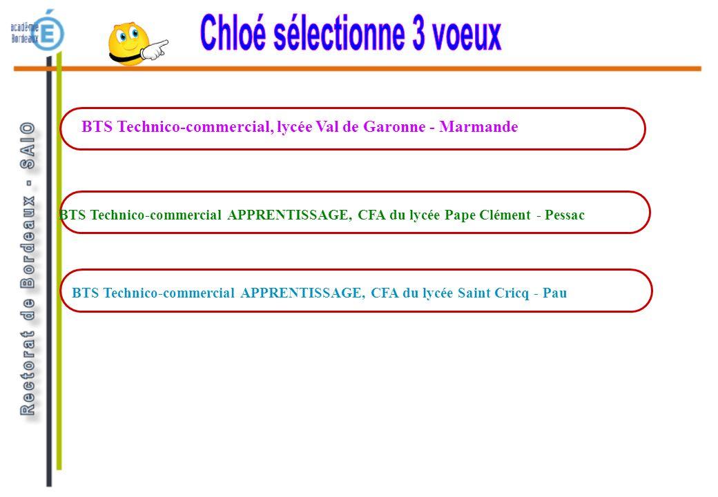 BTS Technico-commercial, lycée Val de Garonne - Marmande BTS Technico-commercial APPRENTISSAGE, CFA du lycée Saint Cricq - Pau BTS Technico-commercial