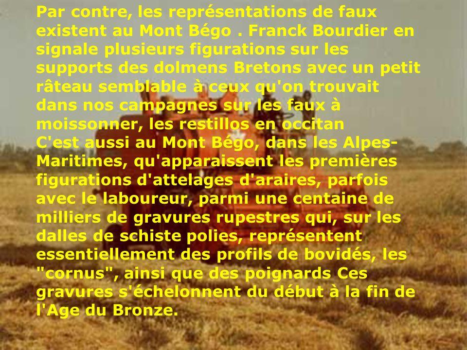 Par contre, les représentations de faux existent au Mont Bégo. Franck Bourdier en signale plusieurs figurations sur les supports des dolmens Bretons a