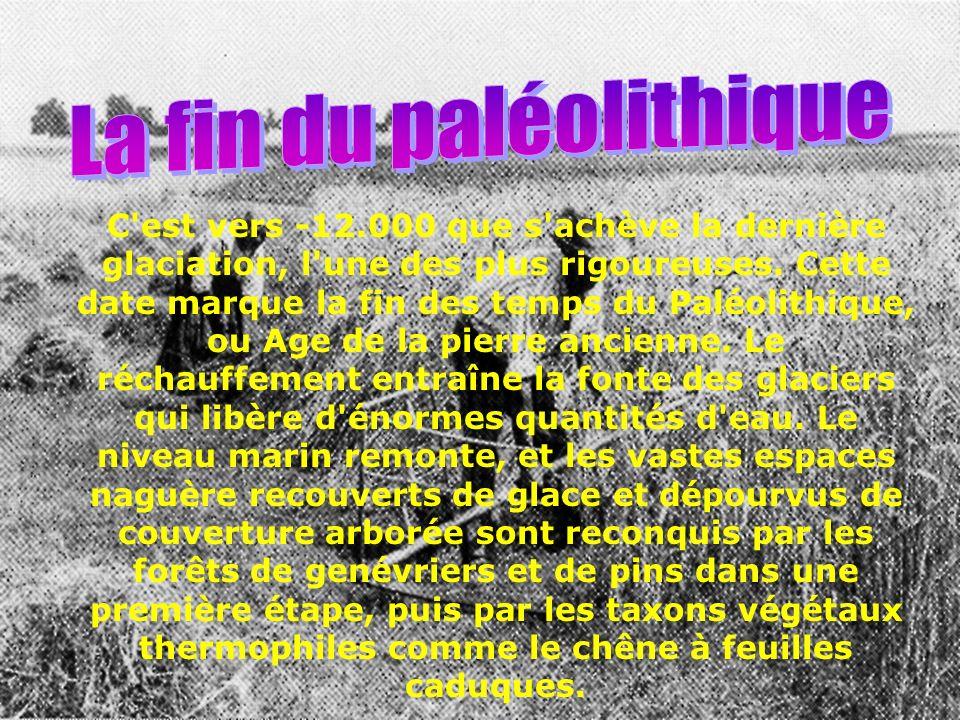 L auteur de l article mentionne un soc d araire en granit découvert dans le village médiéval de Karhaes (Finistère).