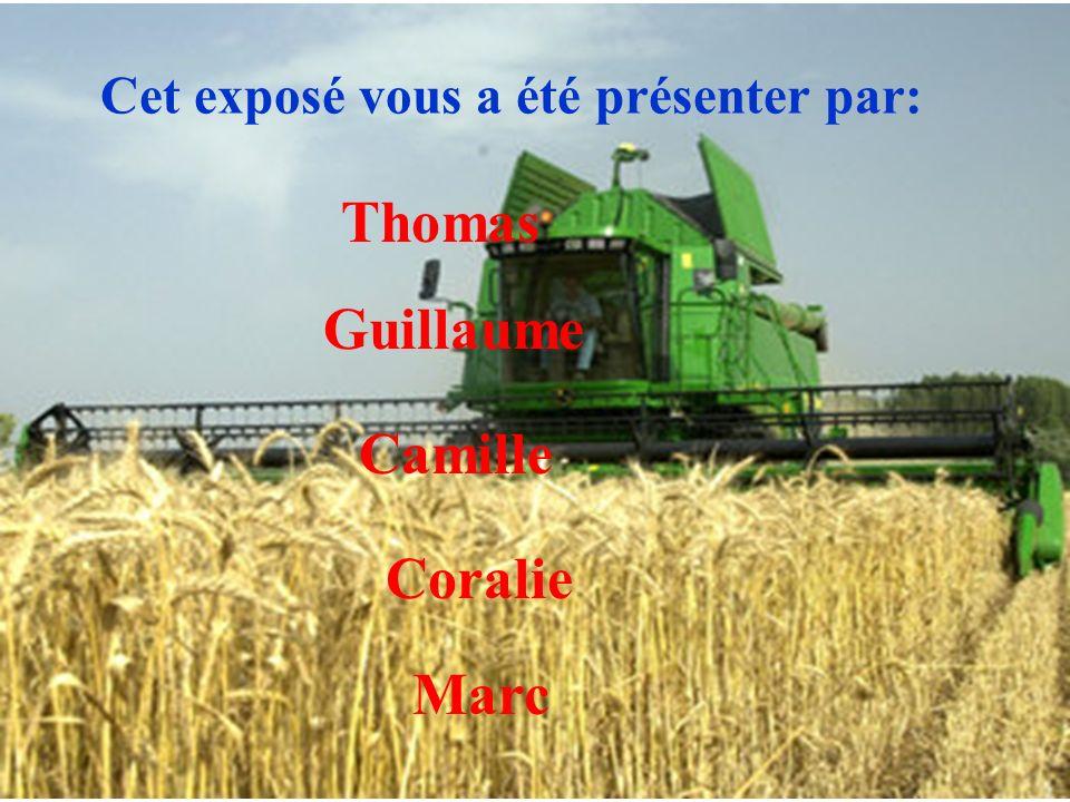 Cet exposé vous a été présenter par: Thomas Guillaume Camille Coralie Marc