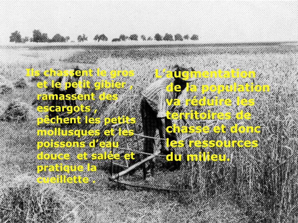 Il apparaît dès 6.000 avant notre ère en Méditerranée occidentale, avant l agriculture.