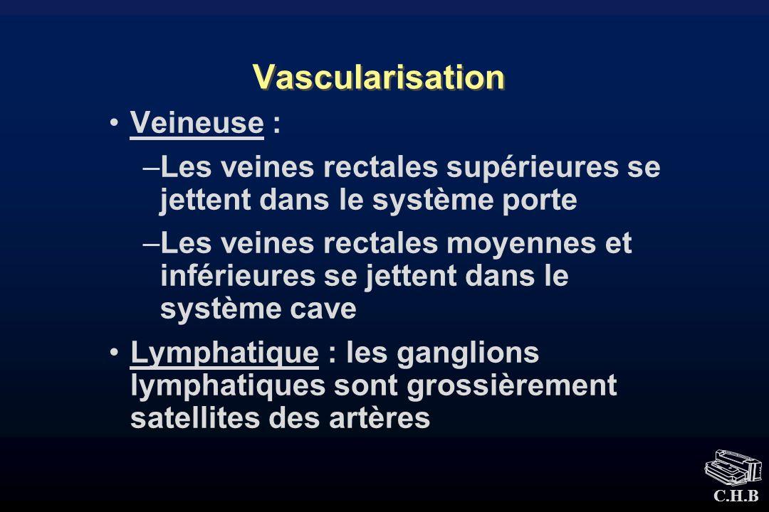 C.H.B Vascularisation Veineuse : –Les veines rectales supérieures se jettent dans le système porte –Les veines rectales moyennes et inférieures se jet