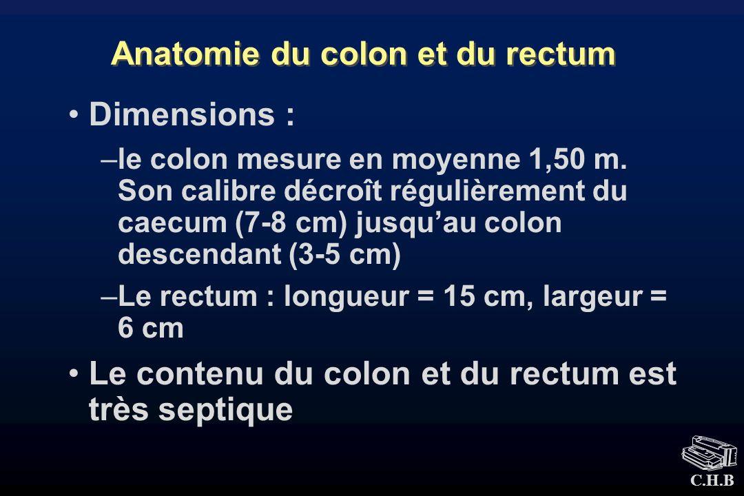 C.H.B Anatomie du colon et du rectum Dimensions : –le colon mesure en moyenne 1,50 m. Son calibre décroît régulièrement du caecum (7-8 cm) jusquau col