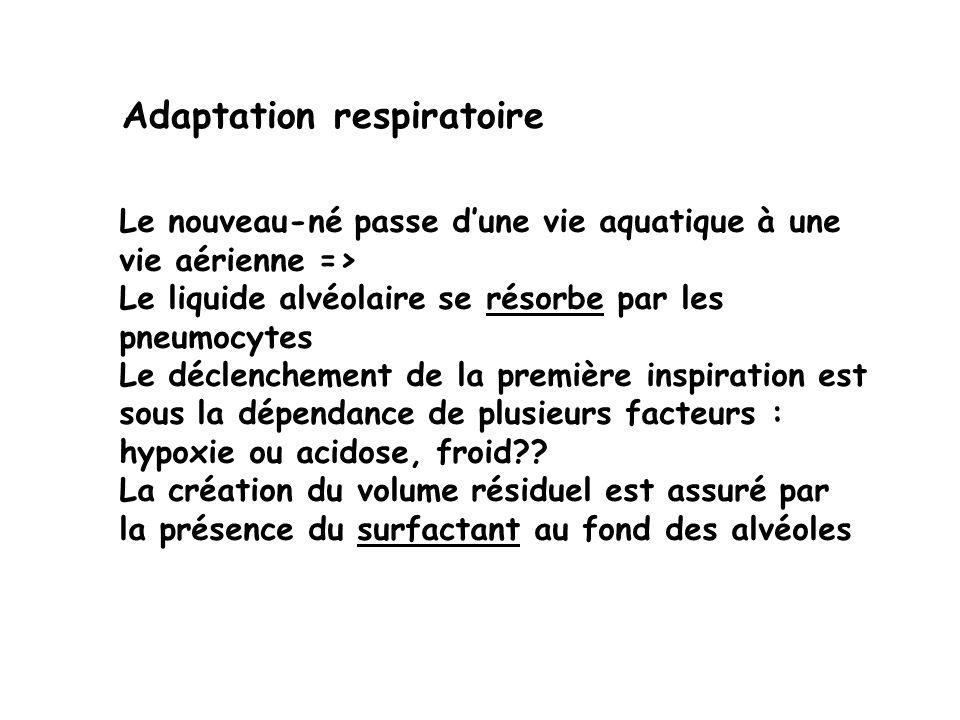 Adaptation respiratoire Le nouveau-né passe dune vie aquatique à une vie aérienne => Le liquide alvéolaire se résorbe par les pneumocytes Le déclenche