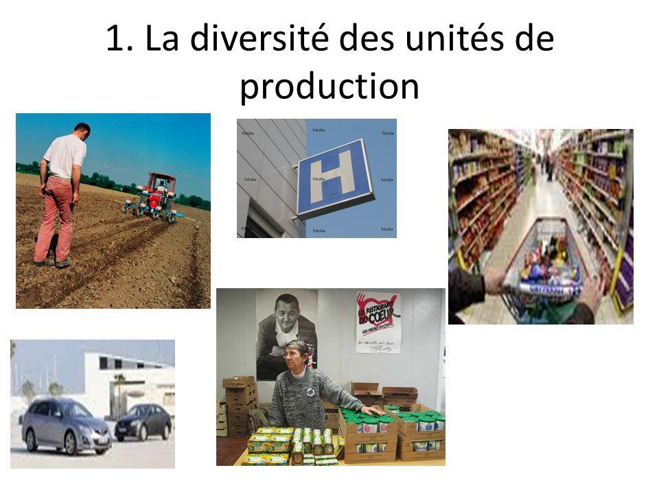 1. La diversité des unités de production