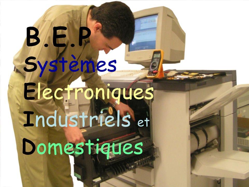 1 - Présentation Le BEP SEID a pour finalité de former des techniciens capables dexercer des activités professionnelles liées à la préparation, la mise en route et la maintenance des installations organisées sous forme de systèmes informatisés interconnectés communicants appartenant aux secteurs industriels et domestiques de lélectronique.