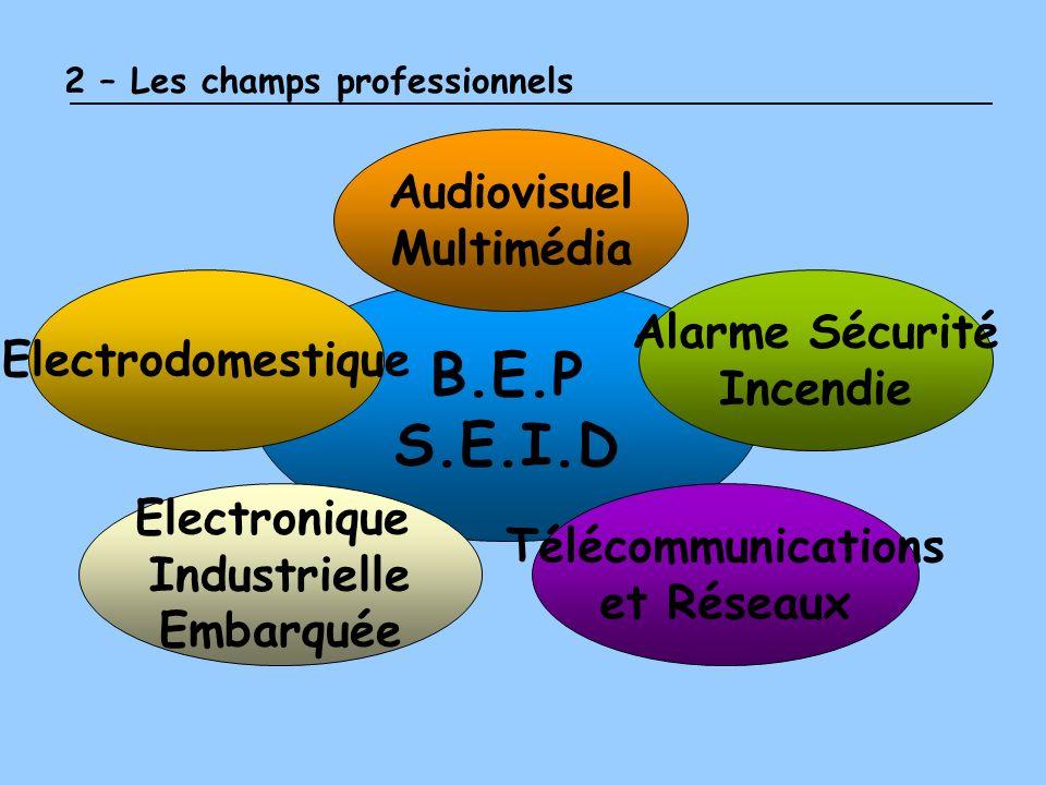 2 – Les champs professionnels B.E.P S.E.I.D Audiovisuel Multimédia Alarme Sécurité Incendie Electrodomestique Télécommunications et Réseaux Electroniq