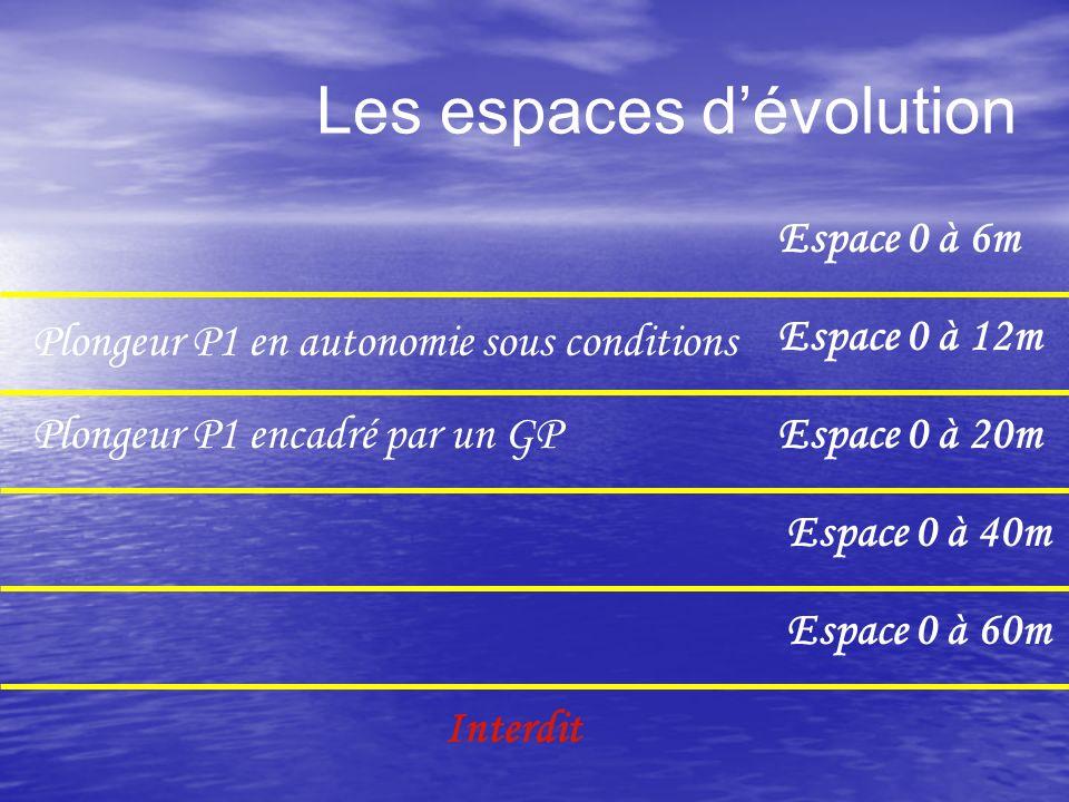 Les espaces dévolution Espace 0 à 12m Espace 0 à 20m Espace 0 à 40m Espace 0 à 60m Interdit Espace 0 à 6m Plongeur P1 encadré par un GP Plongeur P1 en